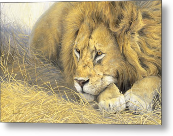 In The Shade Metal Print