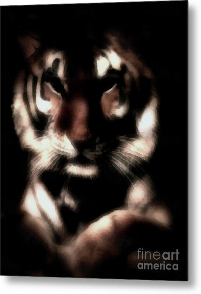 In The Shadows Of Night Metal Print