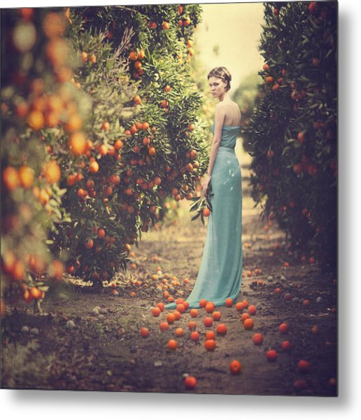 In The Tangerine Garden Metal Print