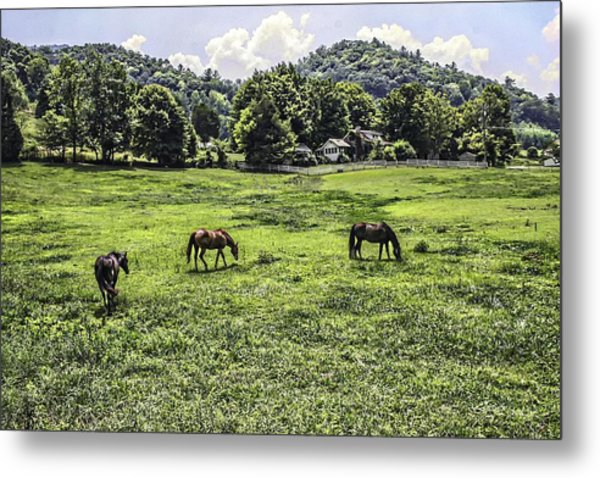 In The Valley Metal Print by Barry Jones
