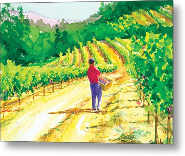 In The Vineyard Metal Print by Ray Cole