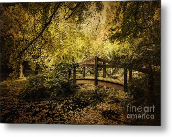 In Wonder Metal Print