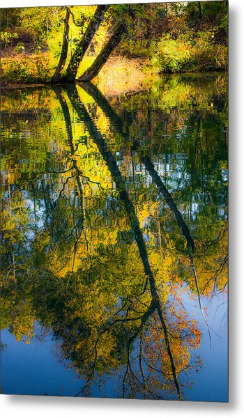Incredible Colors Metal Print