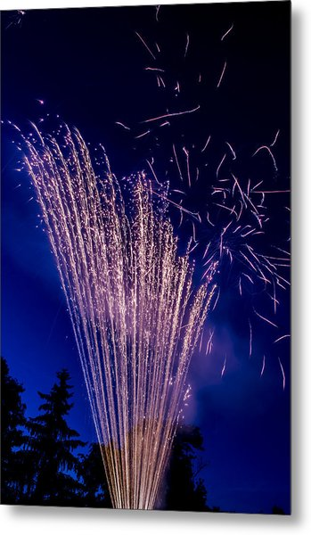 Independence Day 2014 17 Metal Print