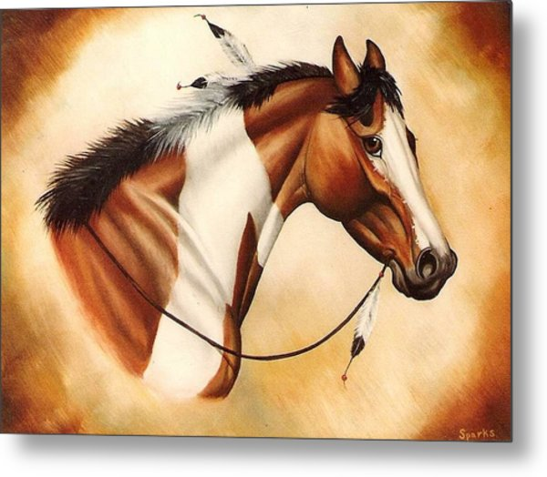 Indian Pony Metal Print by Kay Sparks