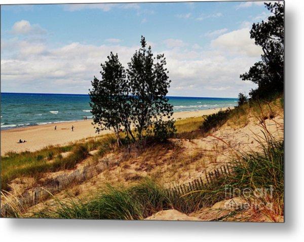 Indiana Dunes Two Tree Beachscape Metal Print