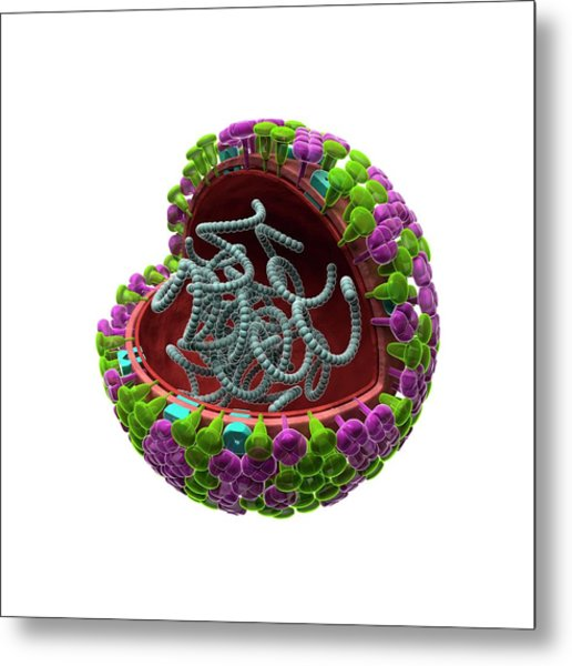 Influenza Virus Structure Metal Print by Harvinder Singh
