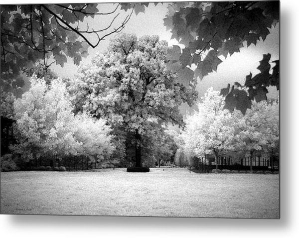 Infrared Majesty Metal Print
