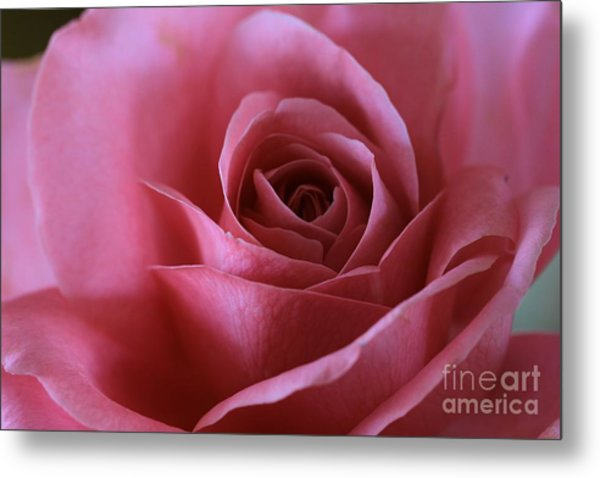 Inner Beauty All Profits Go To Hospice Of The Calumet Area Munster Indiana Metal Print