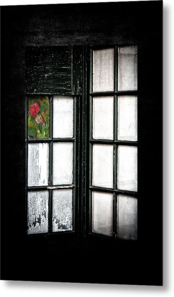Inside Looking Out Metal Print by Bobbi Feasel