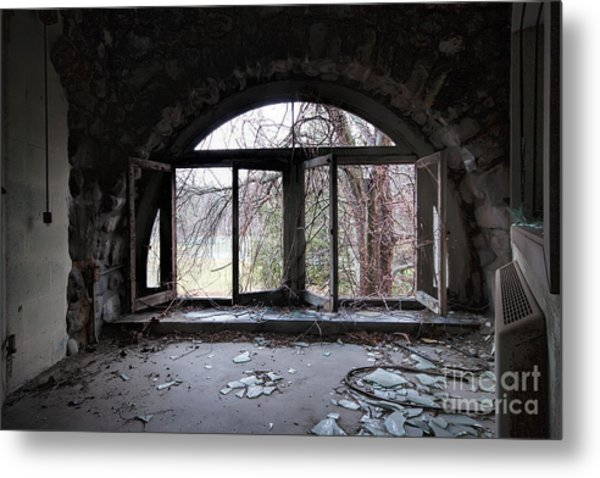 Inside Looking Out Metal Print