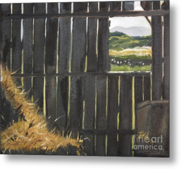 Barn -inside Looking Out - Summer Metal Print