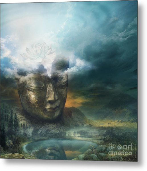 Insight Metal Print by Silas Toball
