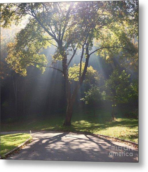 Inspirational Scene Sun Streaming Fog Square Metal Print
