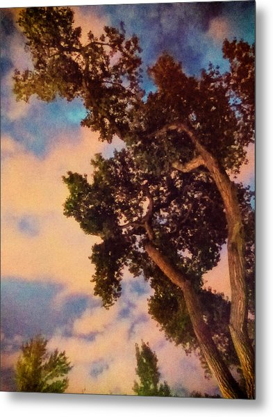 Metal Print featuring the photograph Inspired By Maxfield Parrish by Mary Lee Dereske