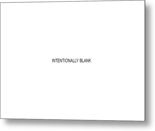 Intentionally Blank Metal Print