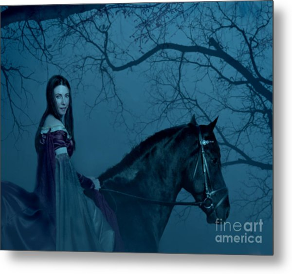 Into The Black Forest Metal Print