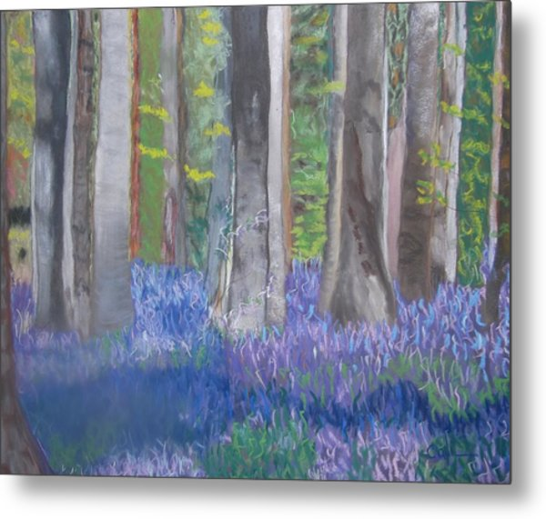 Into The Bluebell Wood Metal Print
