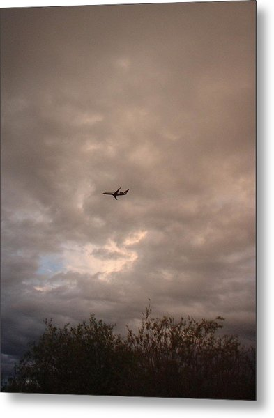 Into The Evening Sky Metal Print by Yvette Pichette