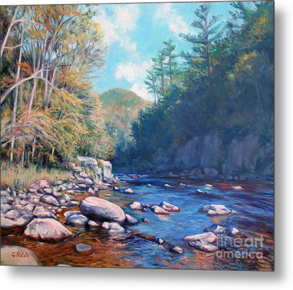 Into The Gorge Metal Print by Gerard Natale