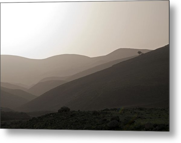 Into The Israel Desert - 1 Metal Print