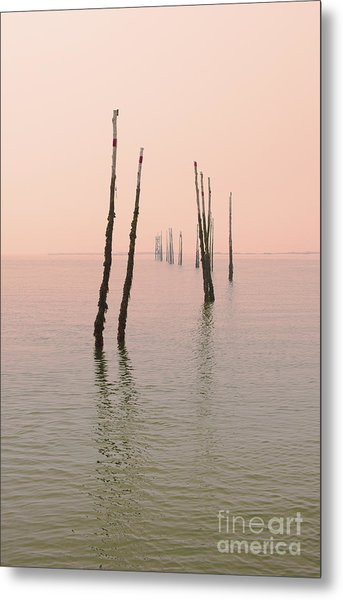 Into The Pink Sunset... Metal Print