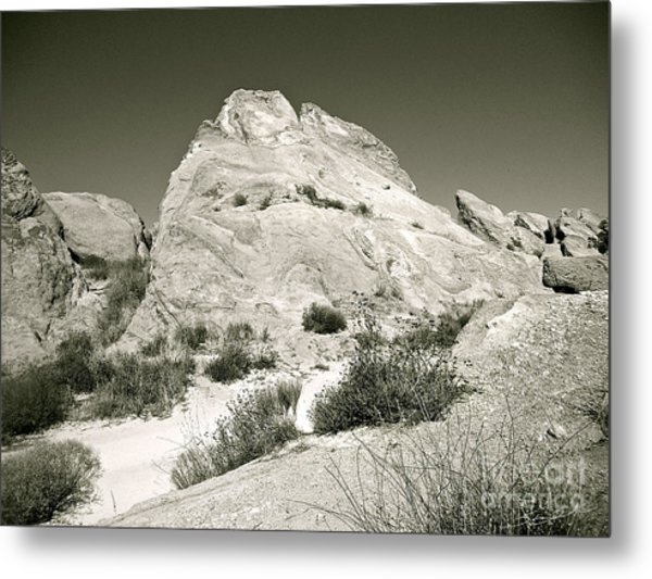 Into The Silence Metal Print
