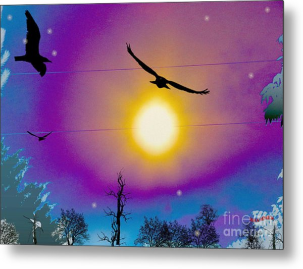 Into The Sun Metal Print by Bobby Hammerstone
