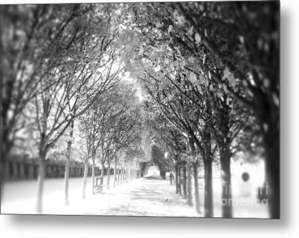Into The Unknown Metal Print