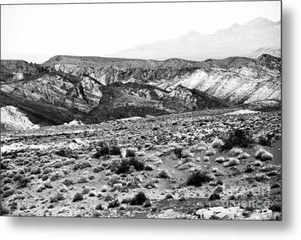 Into The Valley They Went Metal Print by John Rizzuto