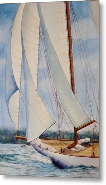 Into The Wind Metal Print by Judy Meng