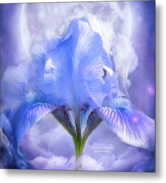Iris - Goddess In The Moonlite Metal Print