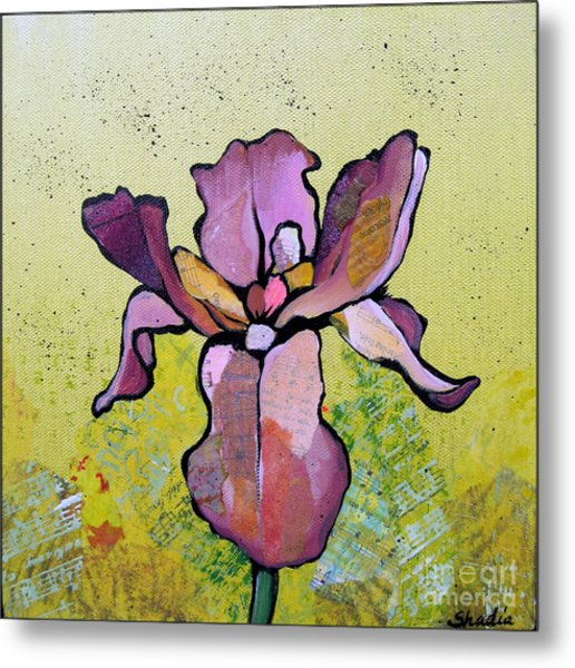 Iris II Metal Print