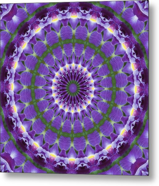 Iris Kaleidoscope  Metal Print by Denise Beverly