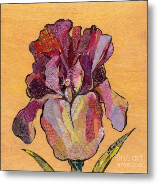 Iris V  - Series V Metal Print