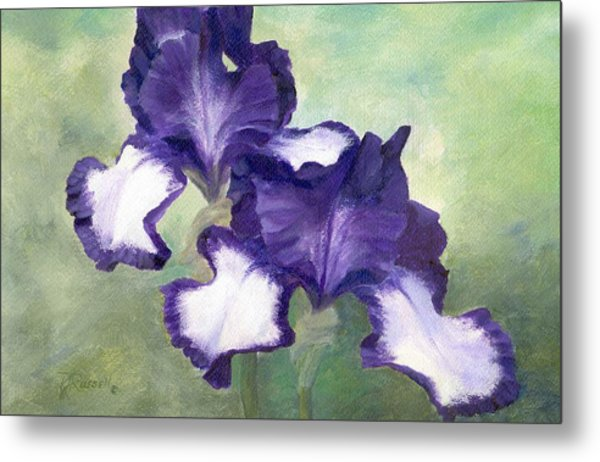 Irises Duet In Purple Flowers Colorful Original Painting Garden Iris Flowers Floral K. Joann Russell Metal Print