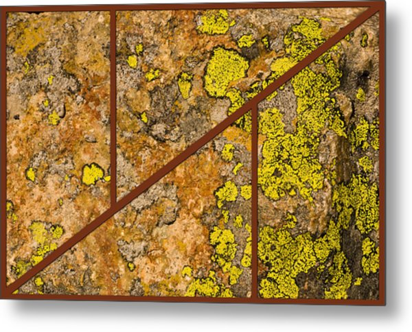 Iron And Lichen Metal Print
