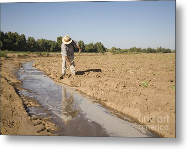 Irrigation In Arizona Desert Metal Print