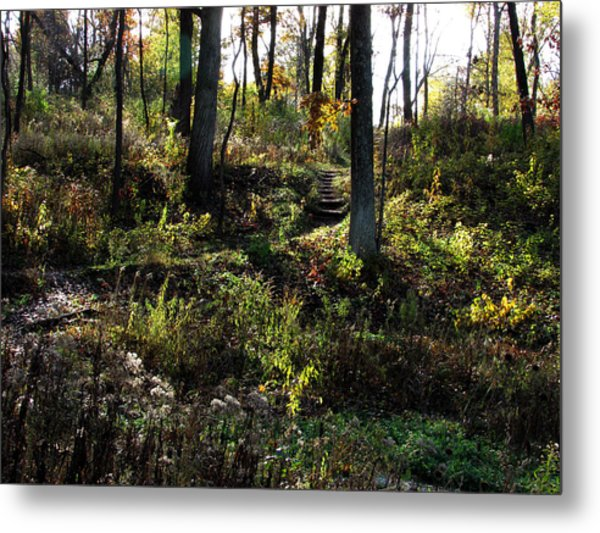 Is This Paradise Metal Print by Kimberly Mackowski