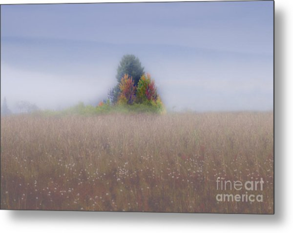 Island Of Color In Sea Of Fog Metal Print