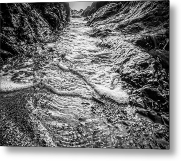 It's A Rush Browns Beach  Metal Print