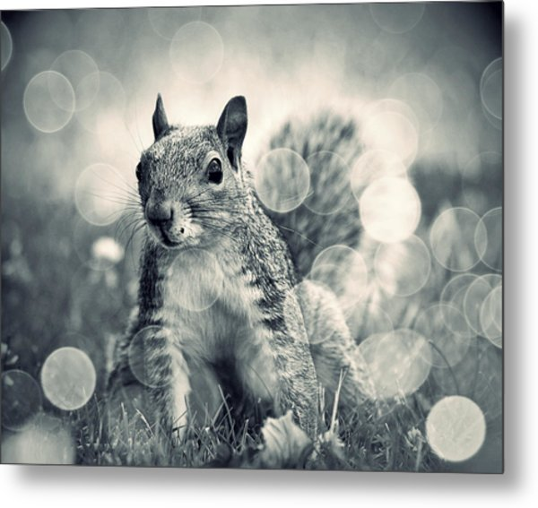 It's A Squirrel's World Too Metal Print