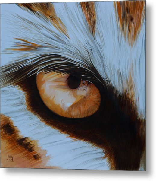 It's All In The Close Up Metal Print