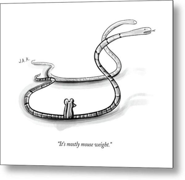 It's Mostly Mouse Weight Metal Print by Jason Adam Katzenstein