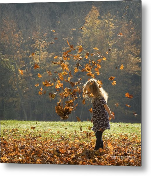 It's Raining Leaves Metal Print