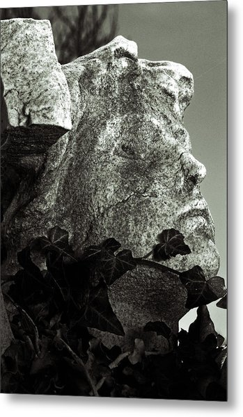 Ivy In Mourning Metal Print