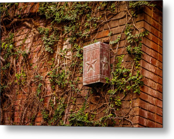 Ivy League Star Metal Print