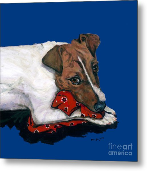 Jack Russell With A Red Bandana Metal Print