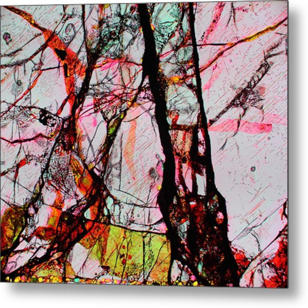 Jacob's Ladder Metal Print