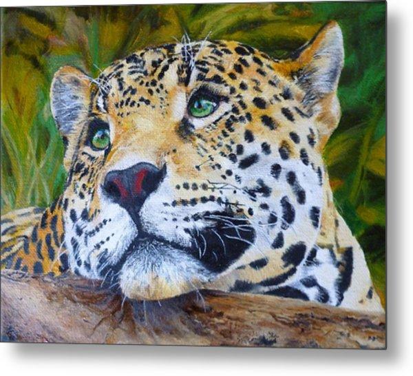 Jaguar Big Cat Original Oil Painting Hand Painted 8 X 10 By Pigatopia Metal Print